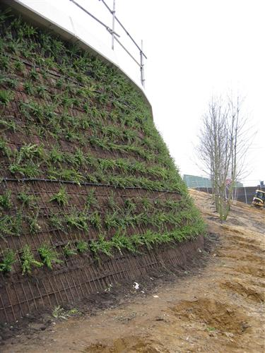 London 2012 - Green Wall Work in Progress